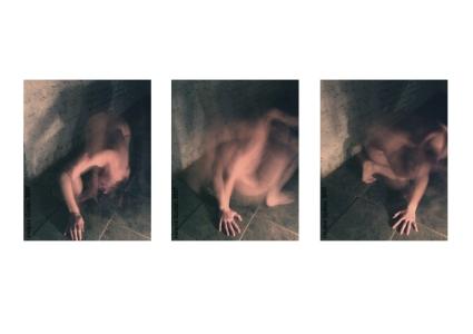 mes nus, 2006